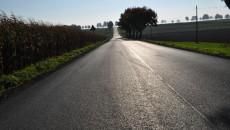 Droga w Karchowie