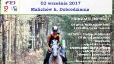Plakat2017_z_programem