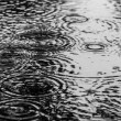 0922_deszcz