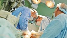 transplantacje