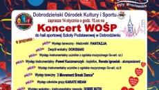 26-Koncert-WOŚP-w-Dobrodzieniu..-e1515501834634