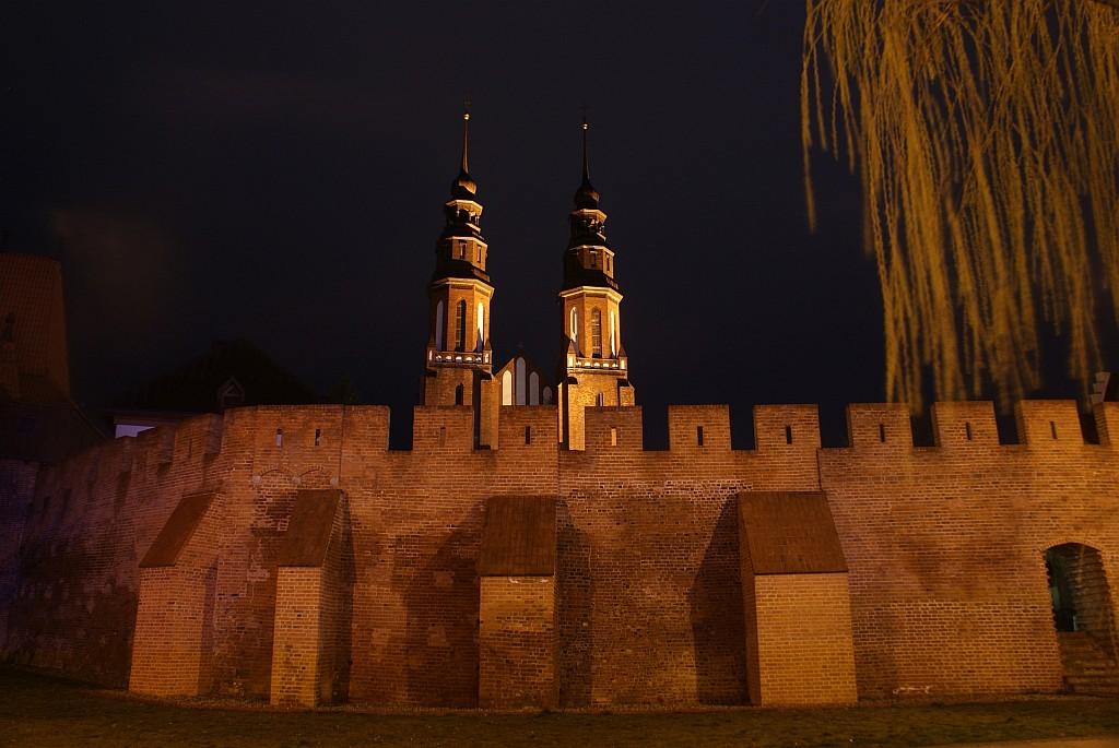 0312_katedra