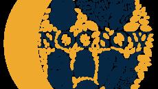 identyfikacja_NOC_SOW