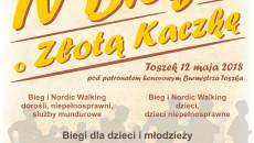 plakat Kaczka pop