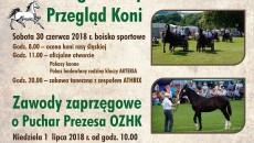 Plakat_Konie_Poreba_2018