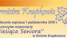 Krapkowice_senior1