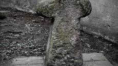 Krzyż Pokutny Baborów (1)