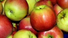 apples-3709749_1920