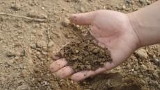gleba_rolnictwo
