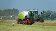 traktor_ciągnik_pole_rolnictwo_bocian