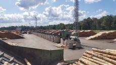 Tartak Stora ENSO Murów (1) Drzewo Drewno Drzewny Przemysł