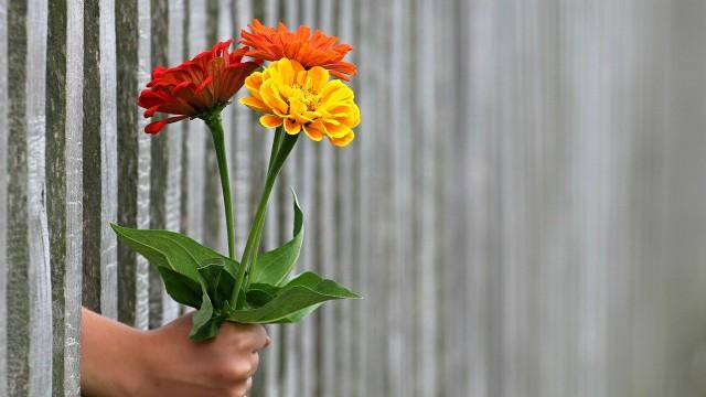 0526_mamy_kwiaty