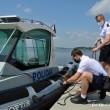 0804_policja półmetek